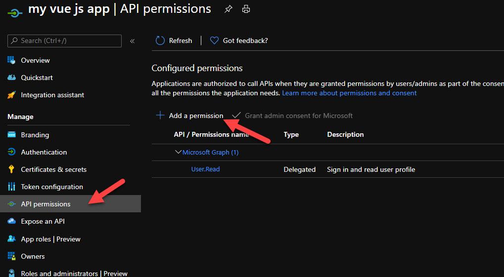 Add API Permissions for Azure Storage