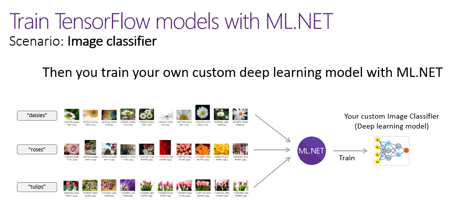 Training Image Classification/Recognition models based on Deep Learning & Transfer Learning with ML.NET