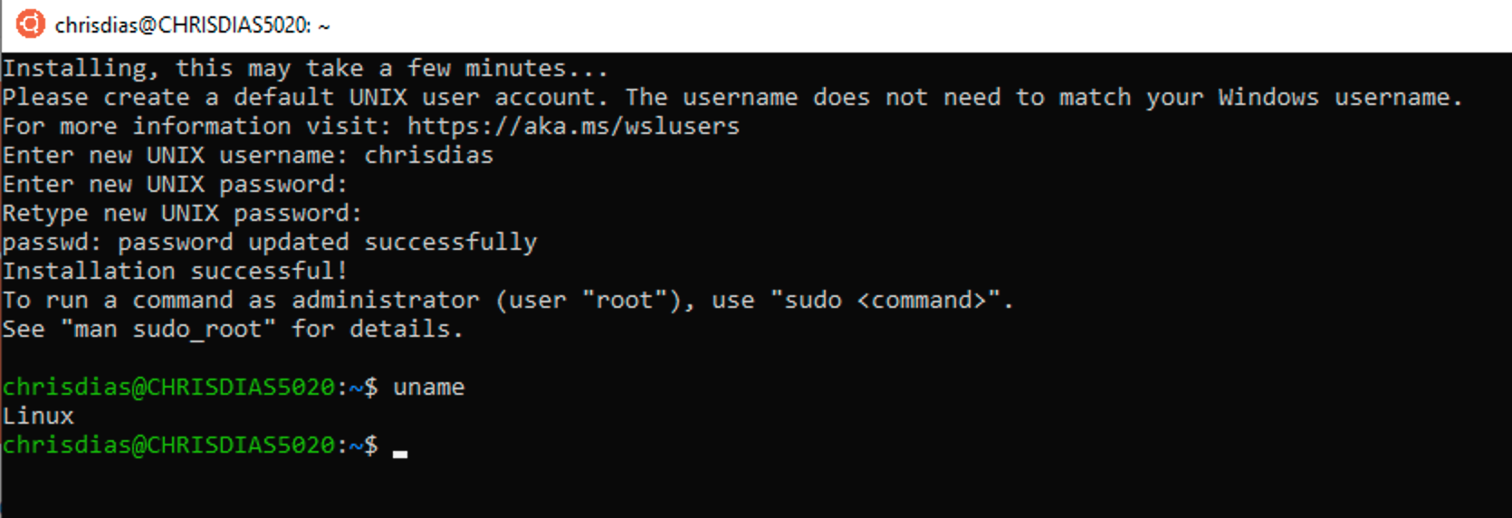 The Linux terminal in WSL