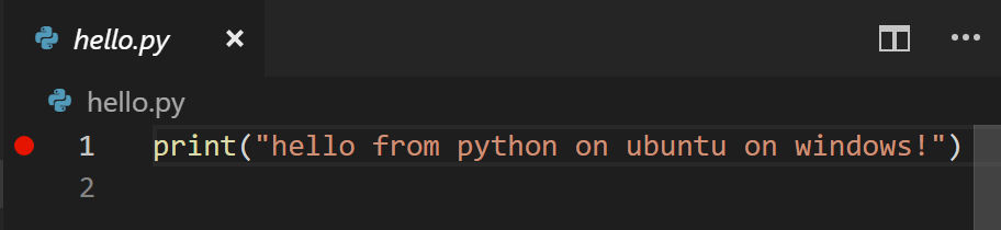 Setting a breakpoint in the VSCode IDE