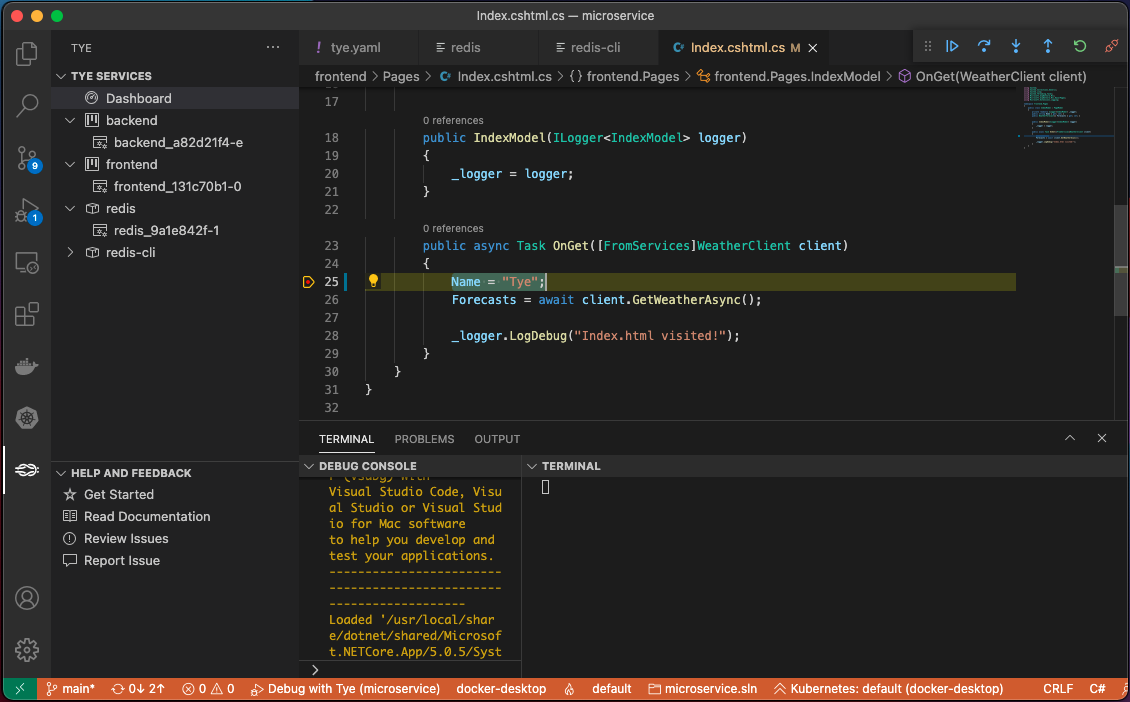 Debugging with the Tye extension