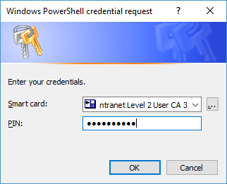 Screenshot of smart card credentials