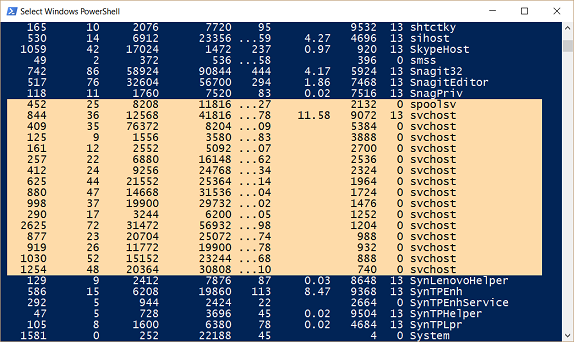 Screenshot of output that shows process names sorted alphabetically and process IDs sorted in reverse order.
